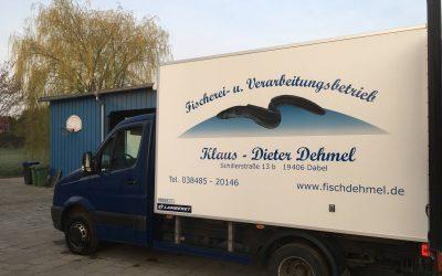 1,8 Millionen Glasaale für die Binnenfischer in Mecklenburg Vorpommern